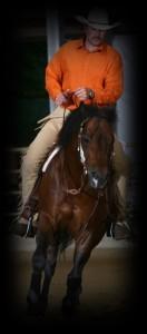 snappy-gallop-hp1